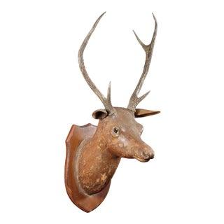 European Carved Wood Deer Wall Mount For Sale