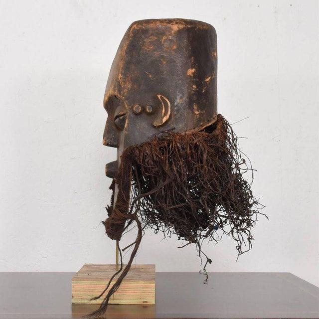 1960s Vintage Lega Mask Bearded Bwami Society For Sale - Image 5 of 7