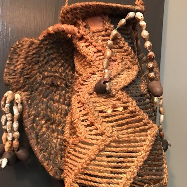 Tribal Koteka of New Guinea - Image 8 of 9