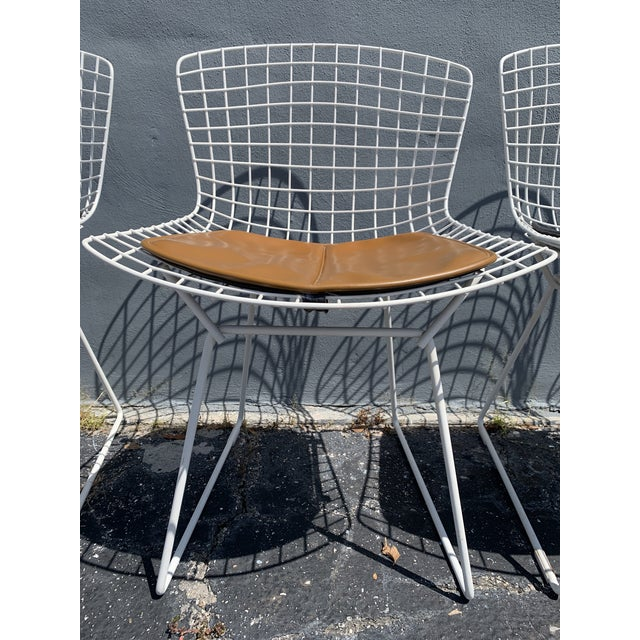 Mid-Century Modern Vintage Mid Century Modern Dining Chairs by Harry Bertoia for Knoll - Set of 4 For Sale - Image 3 of 13