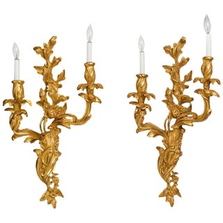 Pair of Louis XV Style Gilt, Two-Light Sconces For Sale