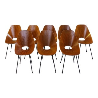 Set of 8 Medea Chairs by Vittorio Nobili for Fratelli Tagliabue, Italy 1955 For Sale