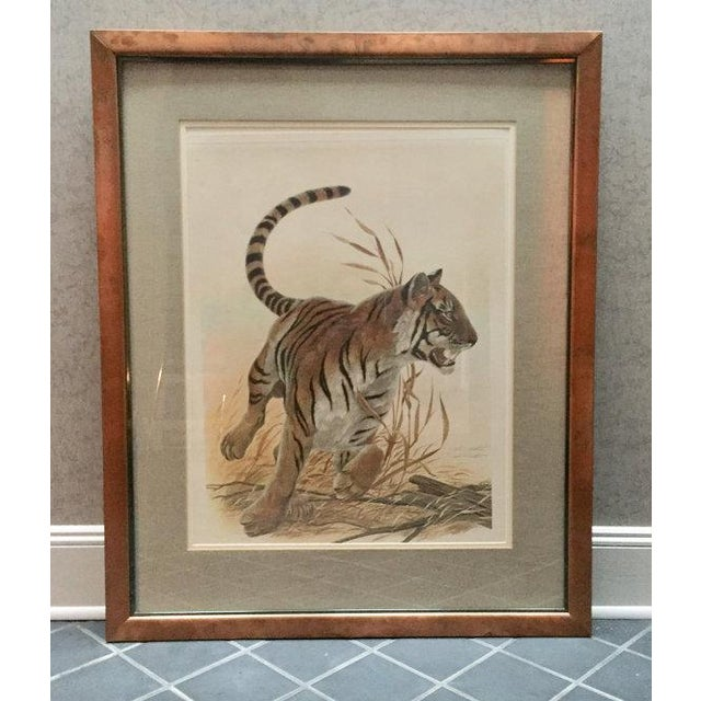This is a limited edition, signed Bengal Tiger photo offset lithograph by renowned wildlife artist John A. Ruthven. This...