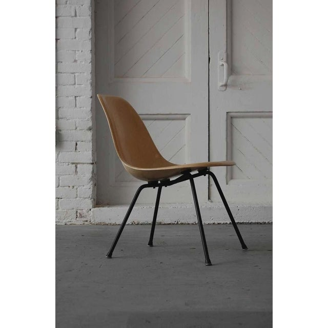 Mid-Century Modern Early Eames Msx Chair For Sale - Image 3 of 7