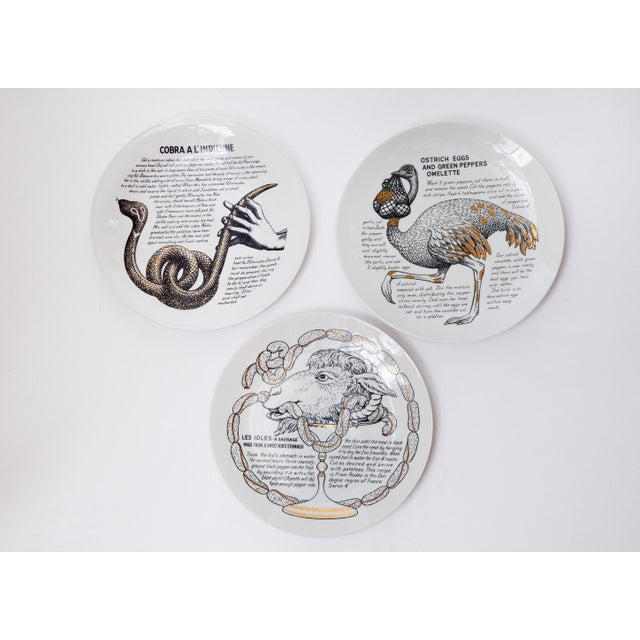 """Ceramic Rare Set of 12 """"Cook Plates"""" by Piero Fornasetti for Fleming Joffe Ltd For Sale - Image 7 of 8"""