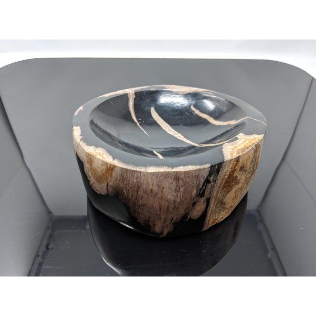 Petrified Wood Bowl, Catchall or Candle Holder For Sale - Image 4 of 11