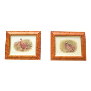 Vintage Lemon Gilt Birdseye Maple Frames Charles Whymper Prints - a Pair For Sale