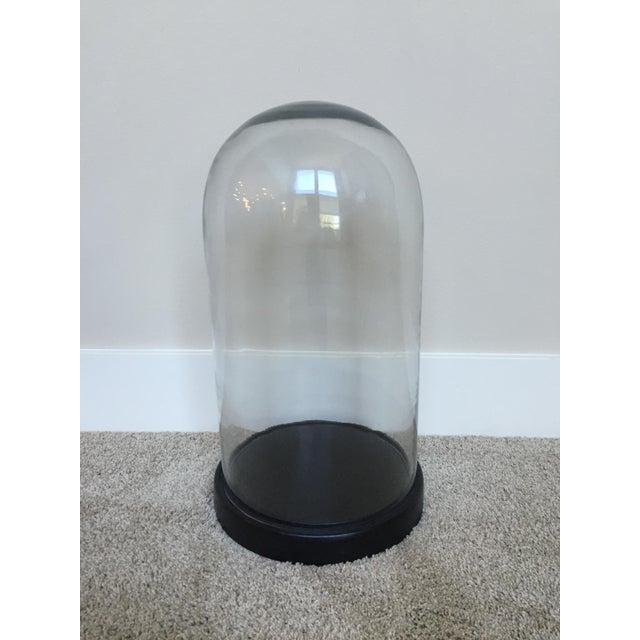 Glass Display Dome on Base - Image 2 of 3