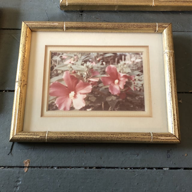 4 beautiful faded old floral photos professionally framed in 1960's overall size with original frame is 6 x 7