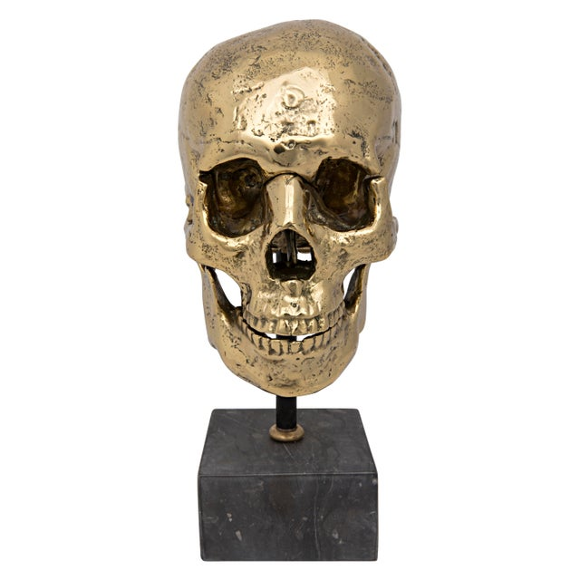 Straight from a vintage apothecary, this brass skull sculpture features an expertly antiqued finish. He, (or she!) rests...