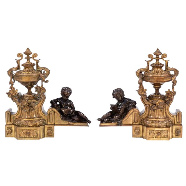 19th Century French Bronze Chenets - a Pair For Sale