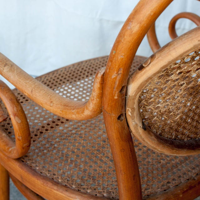 Vintage Thonet Arm Chair - Image 10 of 11