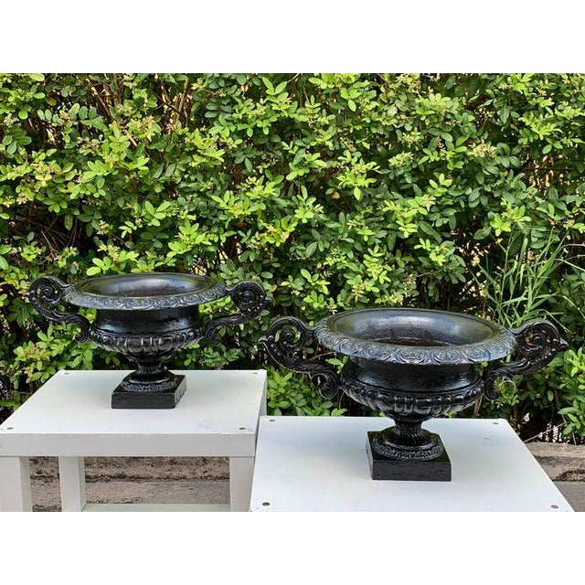 Mid 20th Century Pair of Handled Cast Iron Campana Garden Urns, in Black For Sale - Image 5 of 8