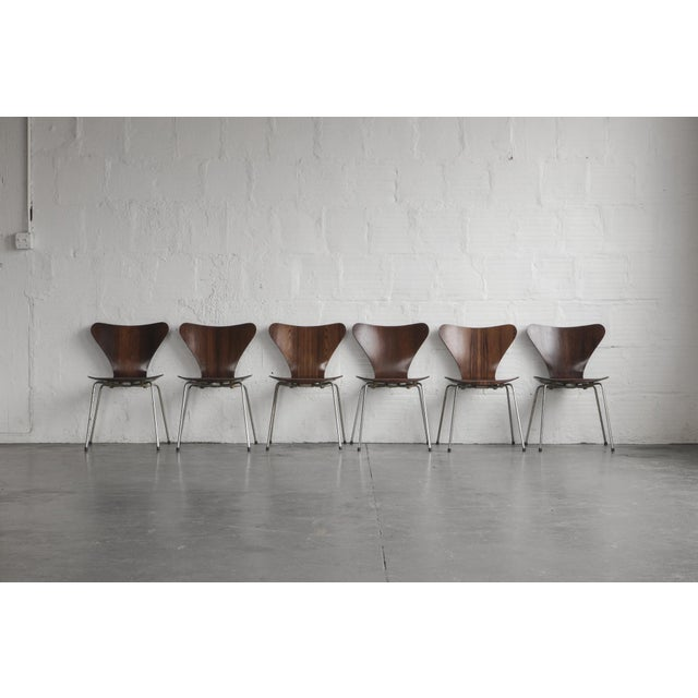 Set of Series 7 Arne Jacobsen Dining Chairs - Image 3 of 8