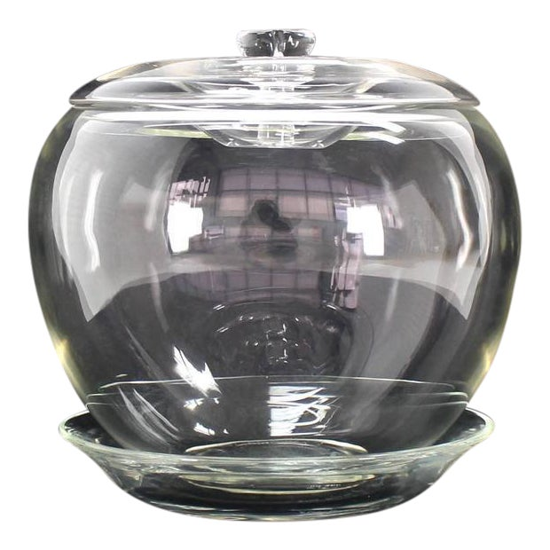 Elsa Petretti for Tiffany Large Glass Apple Jar with Lid and Dish For Sale