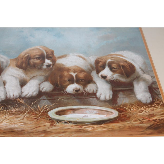 Puppies in the Hay Framed, 19th Century Print For Sale - Image 4 of 8