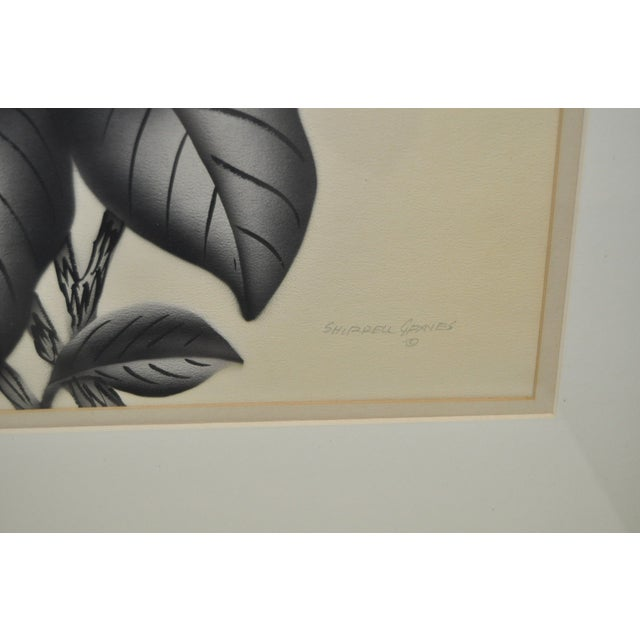 Pair of 1950's Paintings by Shirrell Graves For Sale - Image 7 of 8