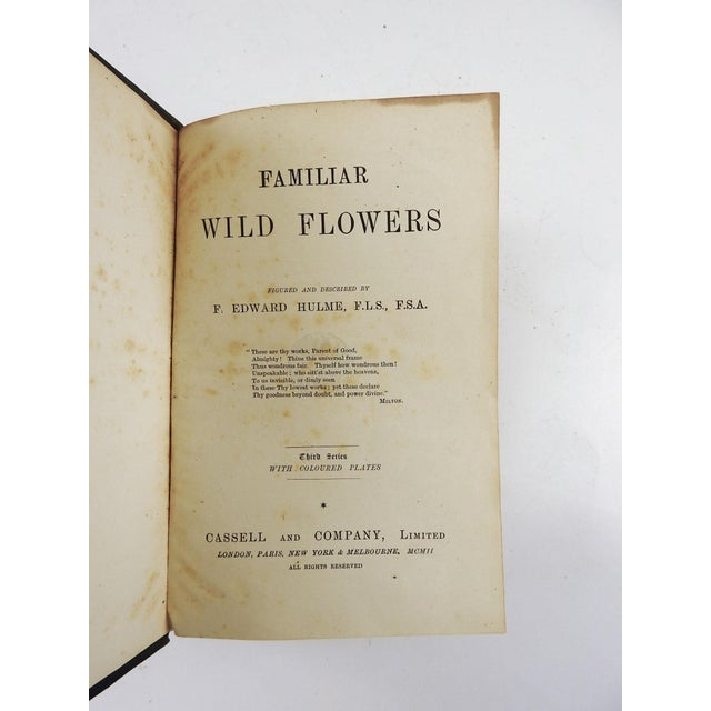 Familiar Wild Flowers Series 3-7 in 2 Volumes by F. Edward Hulme. Cassell & Co., New York, London 1902. Black partial...