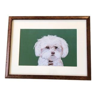 Contemporary Maltese Dog Print by Judy Henn Vintage Burled Wood Frame For Sale