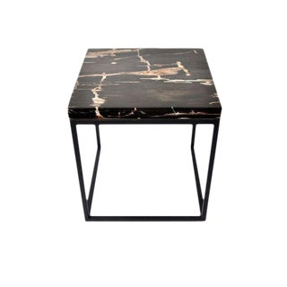 Organic Modern Petrified Wood Side Table For Sale