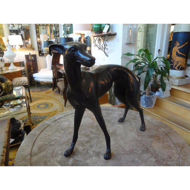 Mid 20th Century Vintage Mid-Century Bronze Whippet Sculpture For Sale - Image 5 of 7