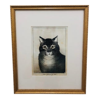 """""""The Favorite Cat"""" in Frame For Sale"""