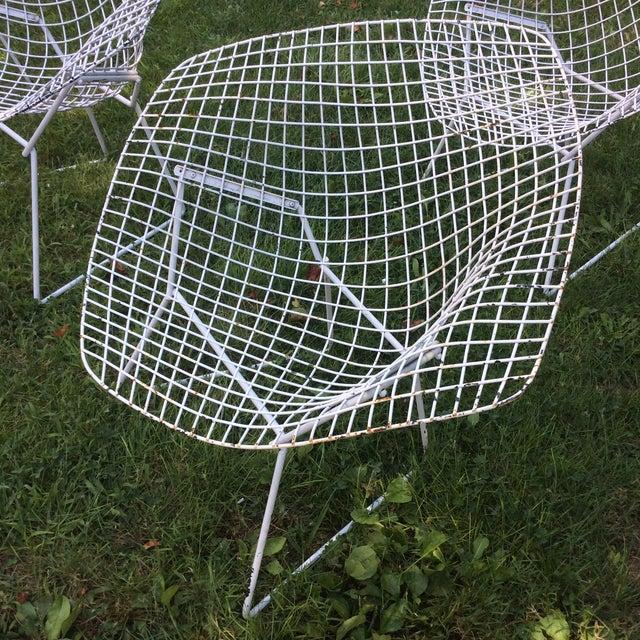 Harry Bertoia Diamond White Chairs - Set of 4 - Image 8 of 8