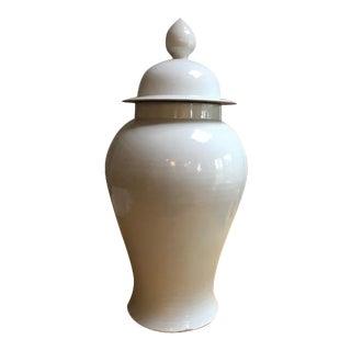 Large Clay Ginger Jar