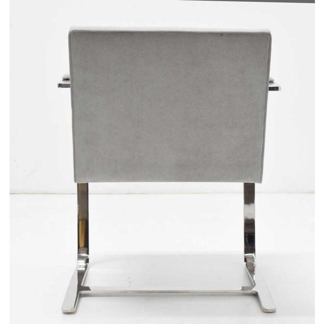 Beautiful polished steel finish, gray suede Classic Brno chairs by Mies der Rohe. These are ready to go.