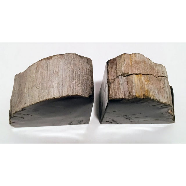Pair of Petrified Wood Bookends - Image 10 of 13