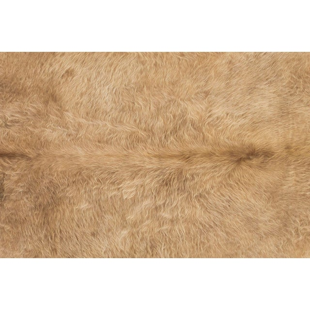 """blonde cowhide Brazil 91 ⅝"""" h x 87 ⅝"""" w we offer free 2-day shipping in the Continental U.S. on all hides"""