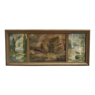 Circa 1900 George W. Turner Nature Prints in Triptych Gilded Wood Frame For Sale