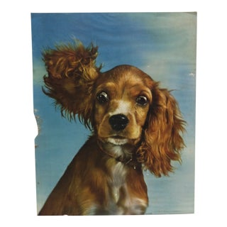 "1950s Vintage ""Puppy Ears"" Original Animal Color Lithograph Print For Sale"