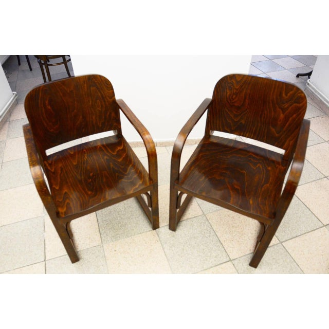Traditional Czech beech & bentwood armchair from Tatra For Sale - Image 3 of 8