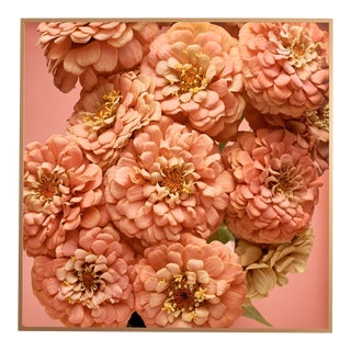 """""""Zinnias"""" Contemporary Botanical Limited Edition Photograph, Framed For Sale"""