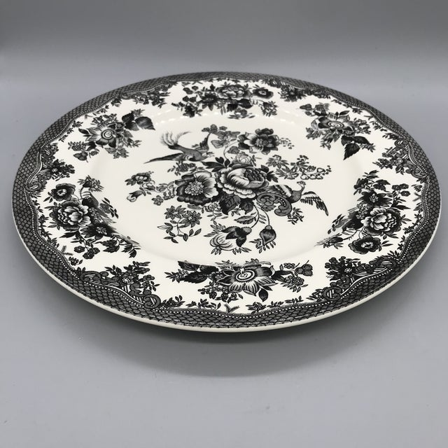 Royal Stafford Asiatic Pheasant Black Chop Plates - Set of 5 For Sale In Los Angeles - Image 6 of 13