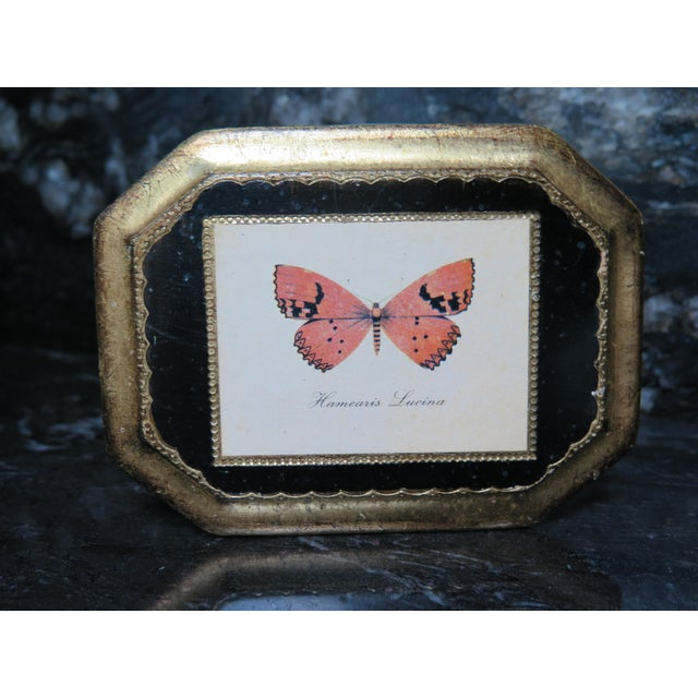 Butterfly Plaque Hanging Decopage Style For Sale - Image 11 of 12