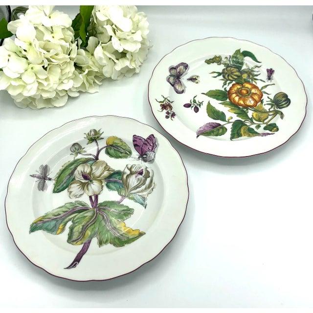 Mottahedeh Chelsea Botanical Vista Alegre Dinner Plates - Set of 4 For Sale - Image 11 of 12