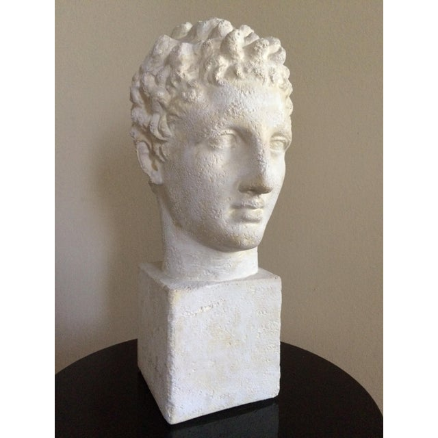 Lifesize Plaster Bust of Hermes For Sale - Image 9 of 11