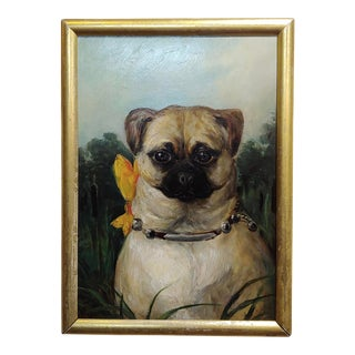 1930s English School - Portrait of a Cute Pug - Oil Painting For Sale