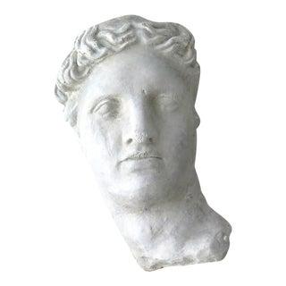 Plaster Greek Head