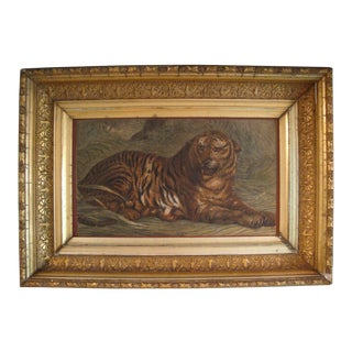 Antique Tiger Engraving With Gilded Age Frame For Sale