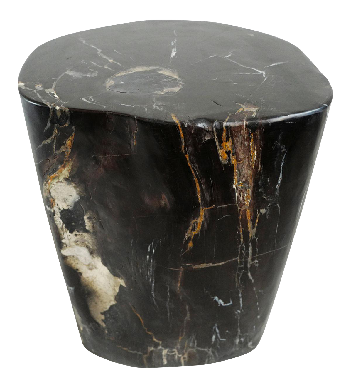 petrified wood side table | chairish