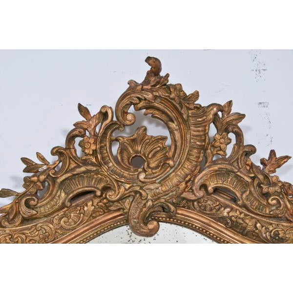 1860 Italian Gilt Wood & Gesso Mirror For Sale - Image 4 of 6