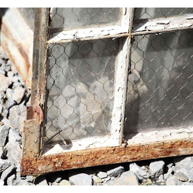 30 Pane Steel Frame Chicken Wire Glass Window For Sale - Image 5 of 5