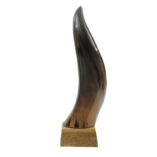 Horn on Mango Wood Base