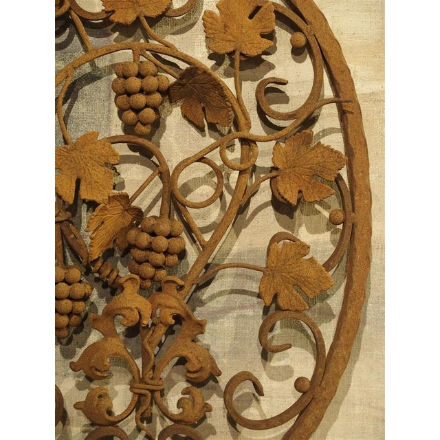 Brown Decorative Oval Iron Wall Hanging With Scrolling Grape Vines For Sale - Image 8 of 11
