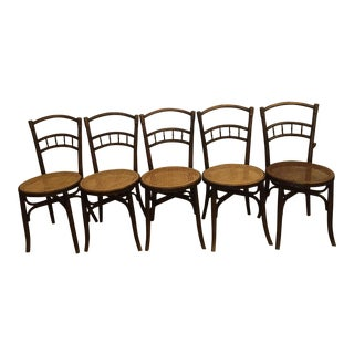Early 20th Century Antique Thonet Style Bentwood Cane Dining Chairs- Set of 5 For Sale