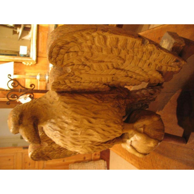 18th. Century Italian Carved Wood Eagle Sculpture For Sale In New Orleans - Image 6 of 8