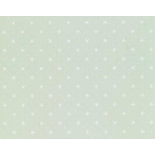 Hinson for the House of Scalamandre Trixie Wallpaper in White on Pale Green For Sale
